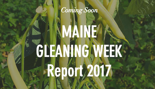 Maine Gleaning Network